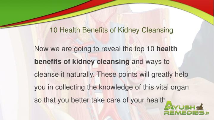 10 Health Benefits of Kidney Cleansing