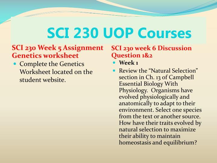 Sci 230 week 3 cell reproduction presentation | Homework Help ...