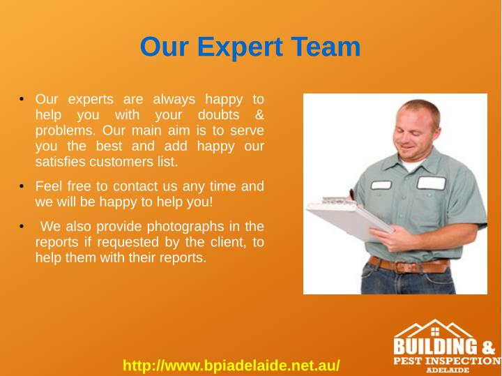 Our Expert Team