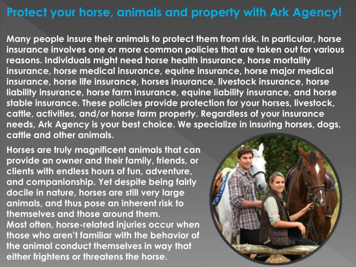 Protect your horse, animals and property with Ark Agency!