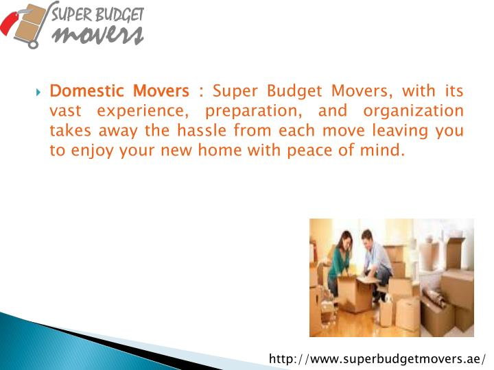 Domestic Movers :