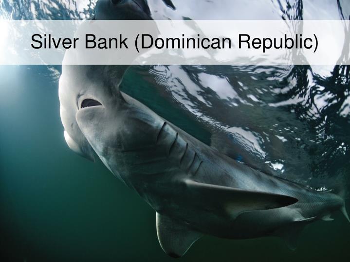Silver Bank (Dominican Republic)
