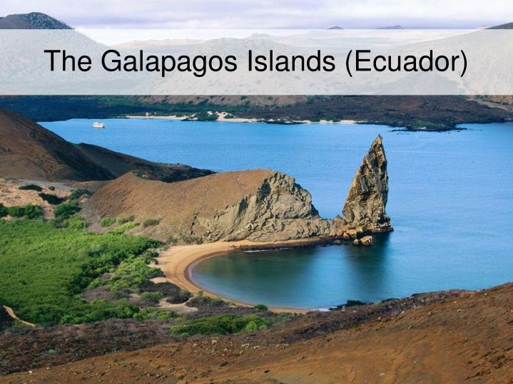 The Galapagos Islands (Ecuador)