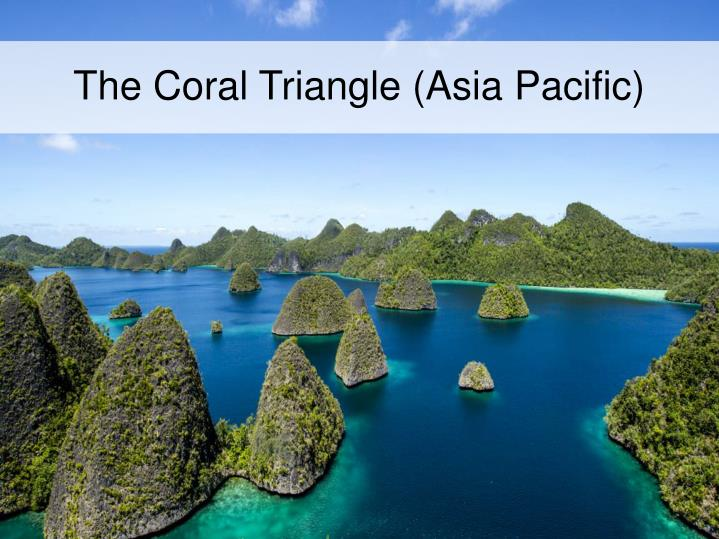 The Coral Triangle (Asia Pacific)