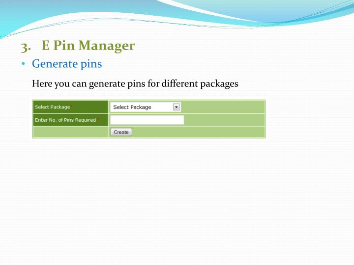 3.   E Pin Manager