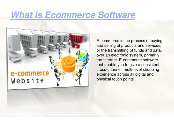 What is ecommerce software