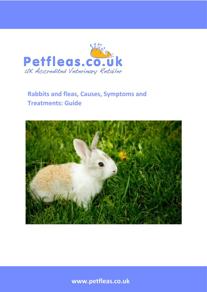Rabbits and fleas, Causes, Symptoms and