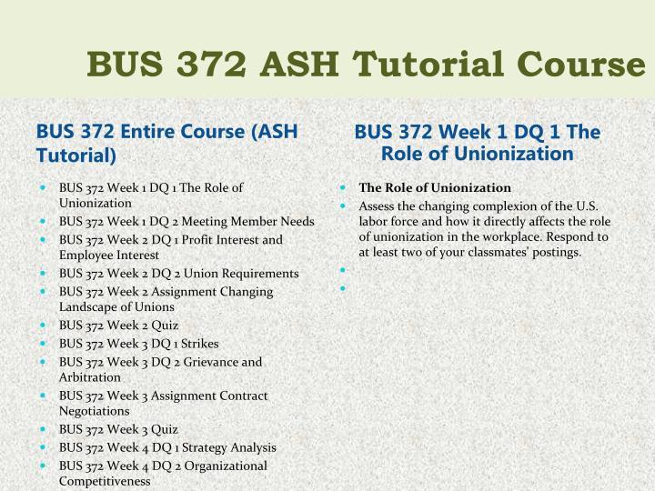 BUS 372 Entire Course (ASH Tutorial)