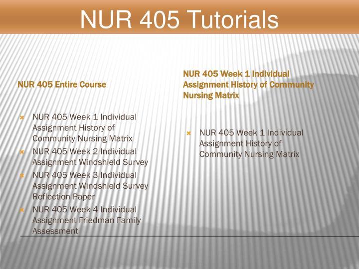NUR 405 Entire Course