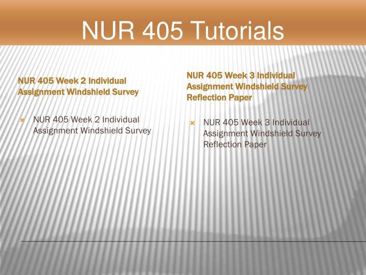 NUR 405 Week 2 Individual Assignment Windshield Survey