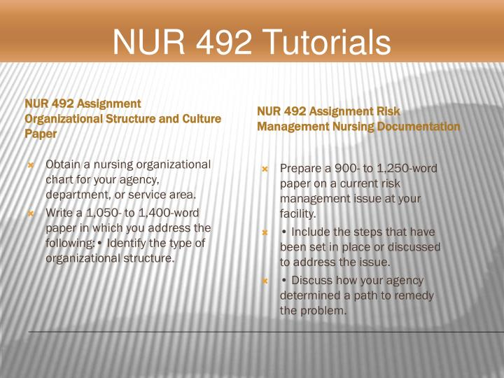 Nur 492 - Organizational Structure and Culture