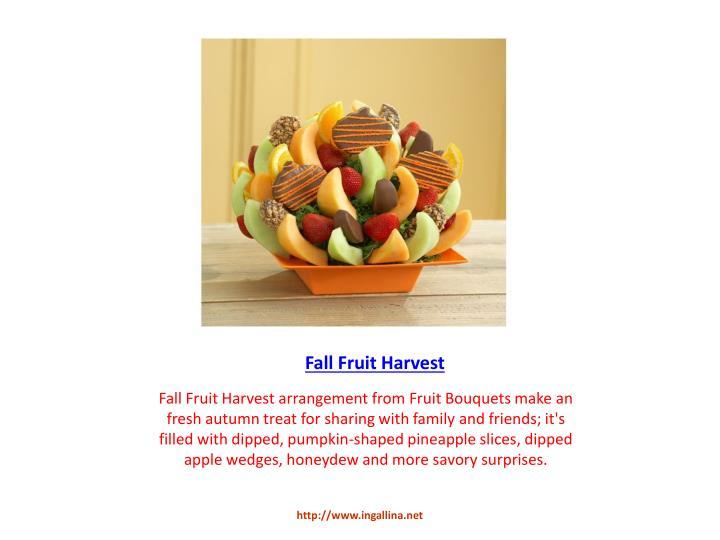 Fall Fruit Harvest