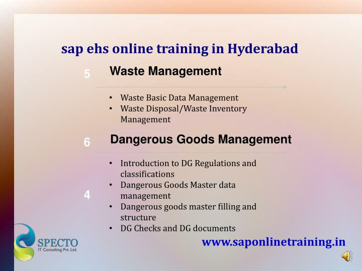 sap ehs online training in Hyderabad