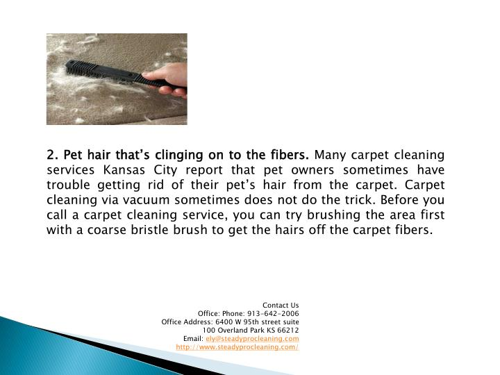 2. Pet hair that's clinging on to the fibers.