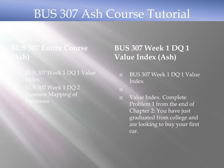 BUS 307 Entire Course (Ash)