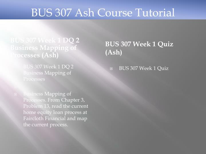 BUS 307 Week 1 DQ 2 Business Mapping of Processes (Ash)