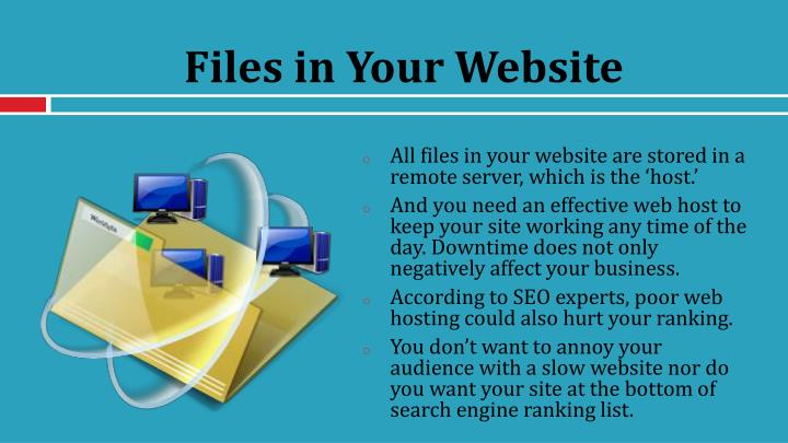 Files in Your Website