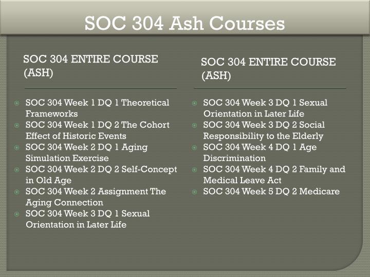 SOC 304 Ash