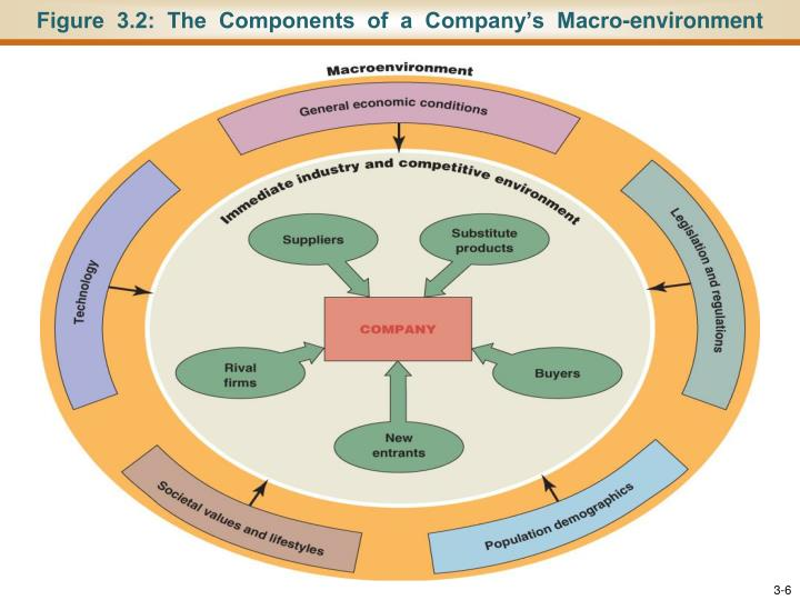 Figure  3.2:  The  Components  of  a  Company's  Macro-environment
