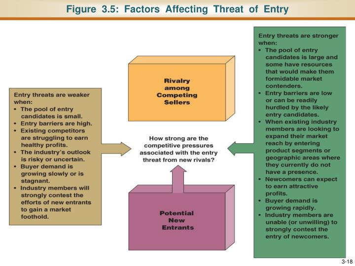 Figure  3.5:  Factors  Affecting  Threat  of  Entry