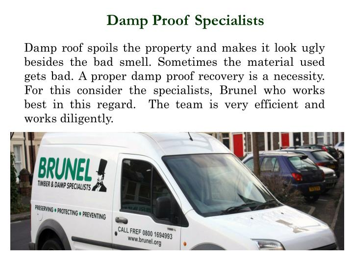 Damp Proof Specialists