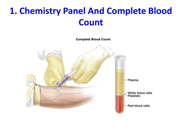 1 chemistry panel and complete blood count