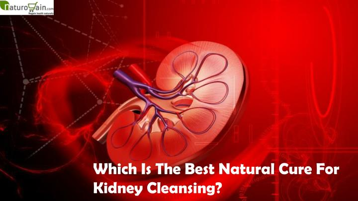 Which Is The Best Natural Cure For Kidney Cleansing?
