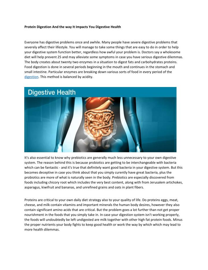 Protein Digestion And the way It Impacts You Digestive Health