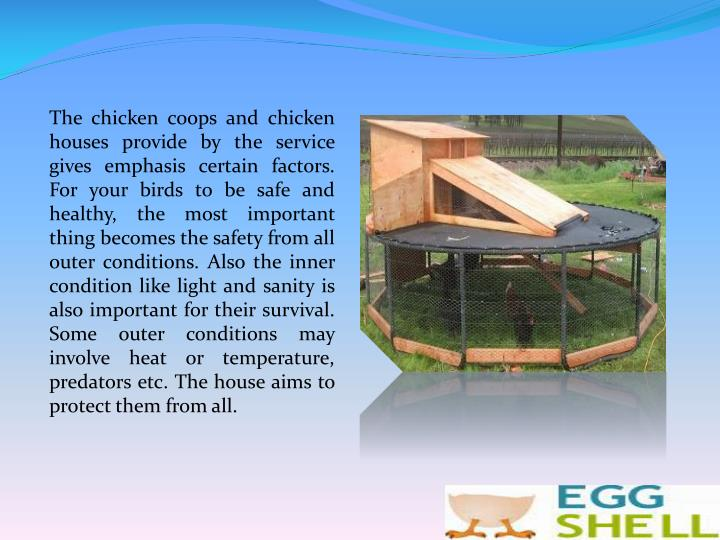 The chicken coops and chicken houses provide by the service gives emphasis certain factors. For your birds to be safe and healthy, the most important thing becomes the safety from all outer conditions. Also the inner condition like light and sanity is also important for their survival. Some outer conditions may involve heat or temperature, predators etc. The house aims to protect them from all.