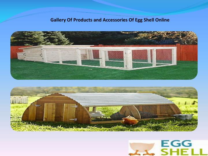 Gallery Of Products and Accessories Of Egg Shell Online