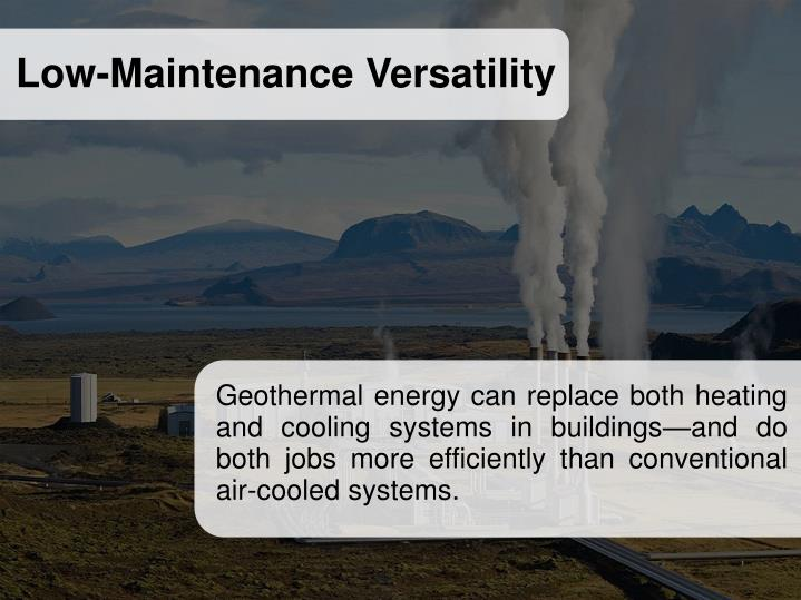 Low-Maintenance Versatility