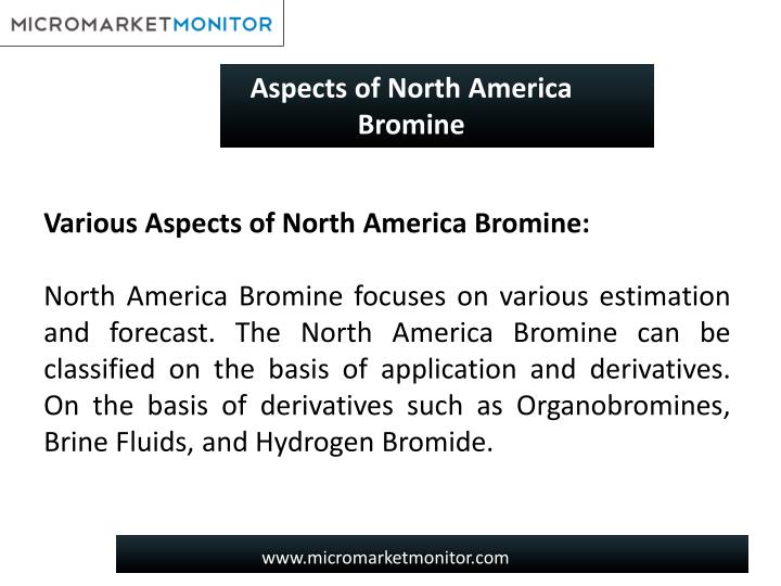Aspects of North America Bromine