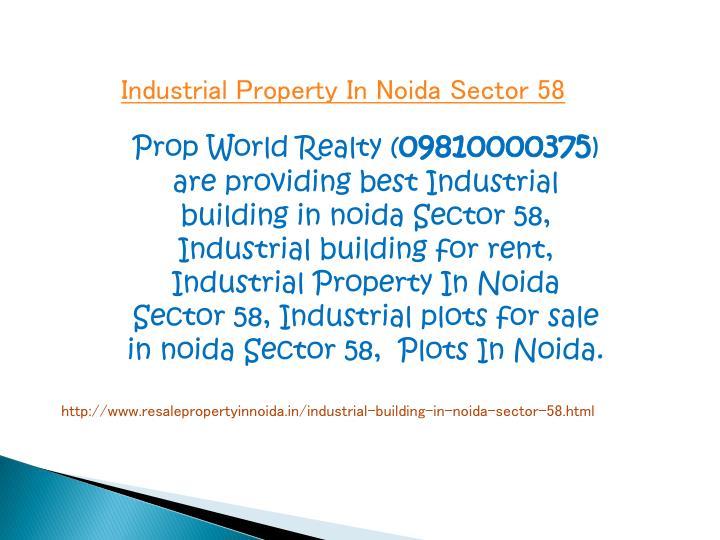 Industrial Property In Noida Sector 58