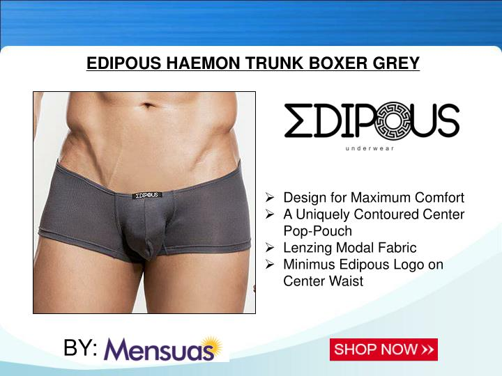EDIPOUS HAEMON TRUNK BOXER GREY