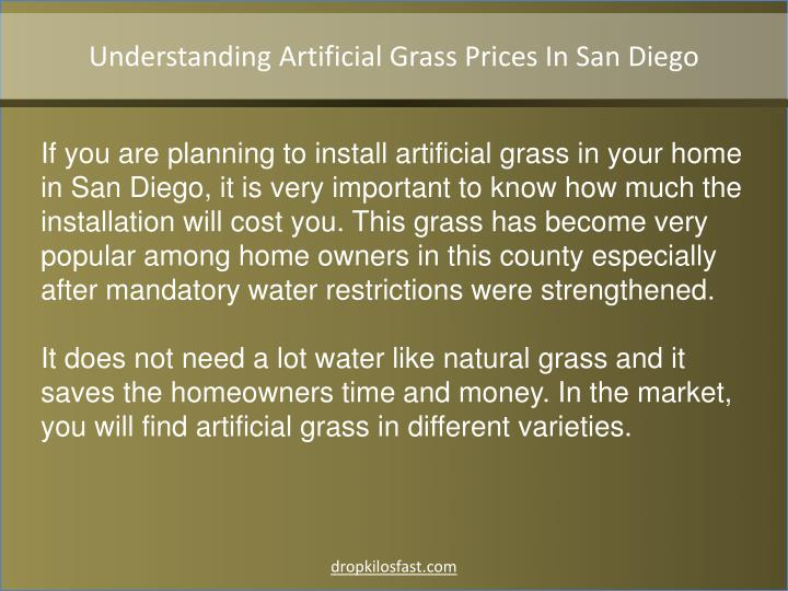 Understanding Artificial Grass Prices In San Diego