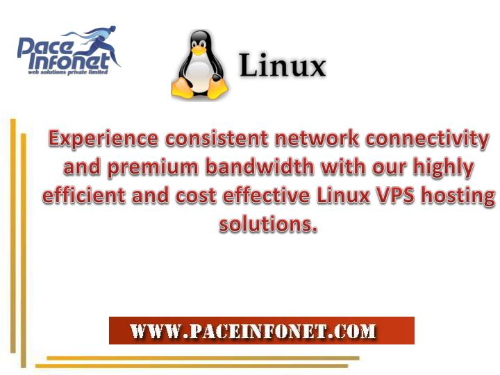 Experience consistent network connectivity and premium bandwidth with our highly efficient and cost effective Linux VPS hosting solutions.