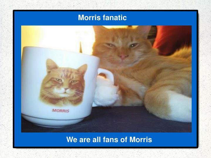 Morris fanatic