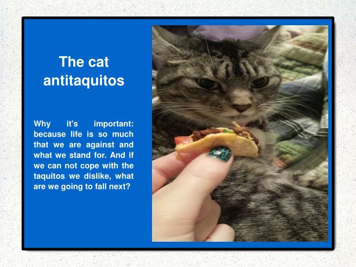 The cat antitaquitos