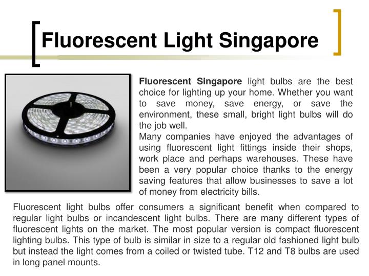 Fluorescent Light Singapore