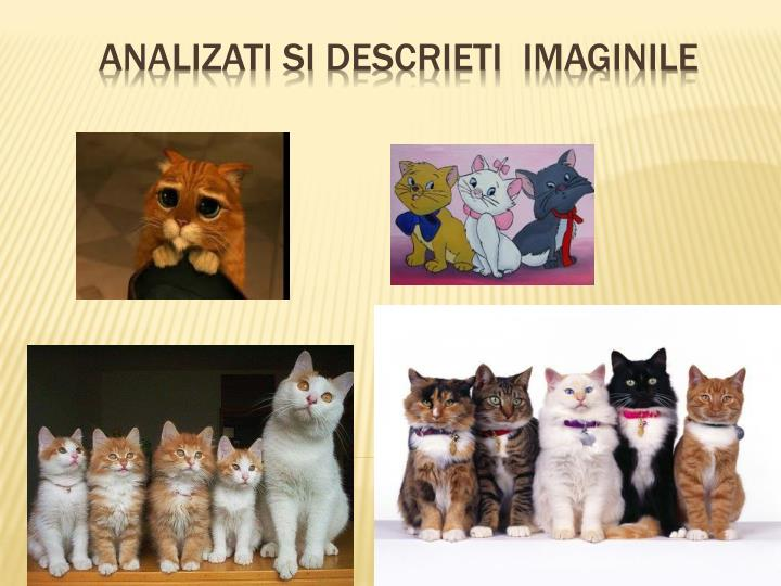 Analizati si descrieti imaginile