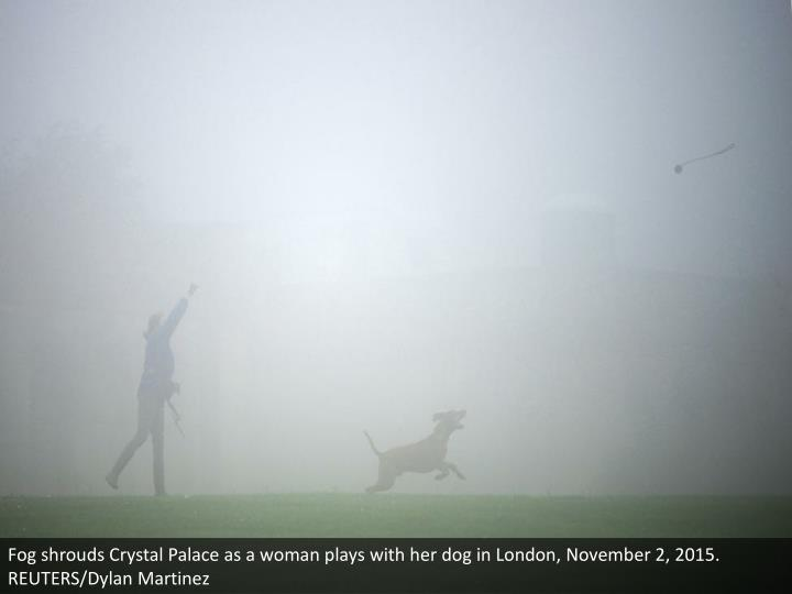 Fog shrouds Crystal Palace as a woman plays with her dog in London, November 2, 2015. REUTERS/Dylan Martinez