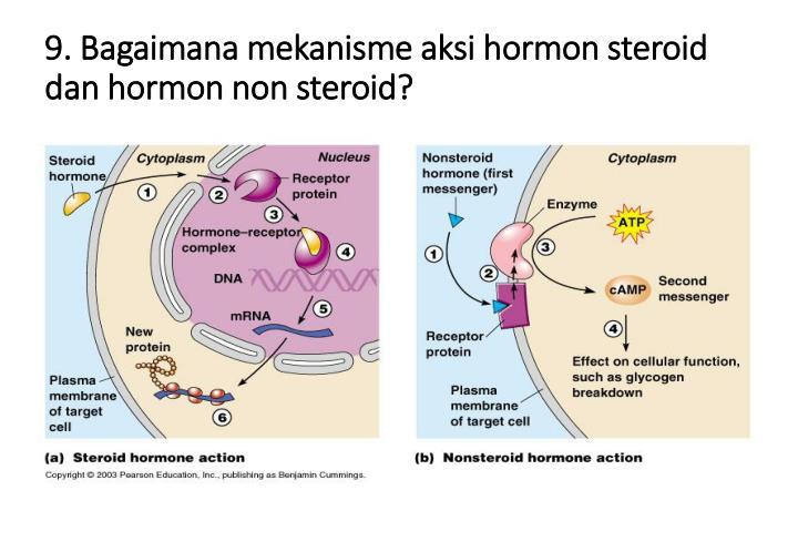 9. Bagaimana mekanisme aksi hormon steroid dan hormon non steroid?