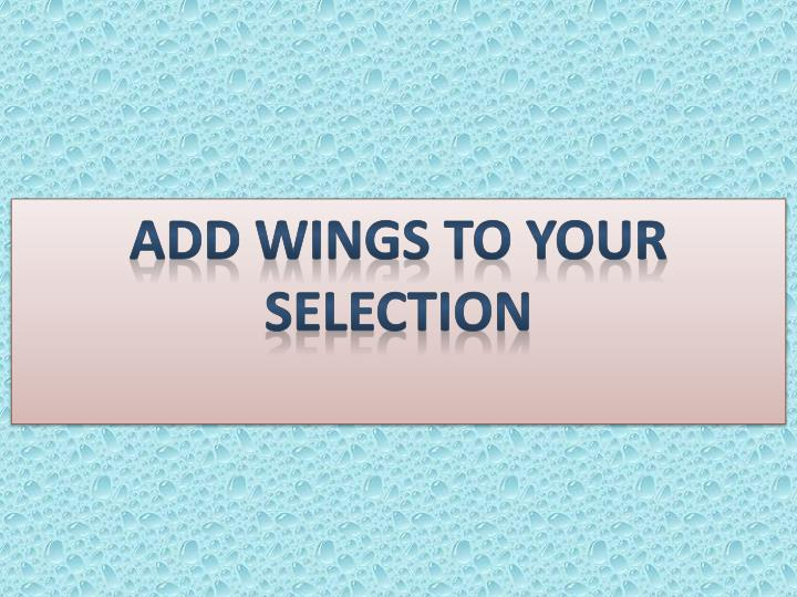 Add wings to your Selection