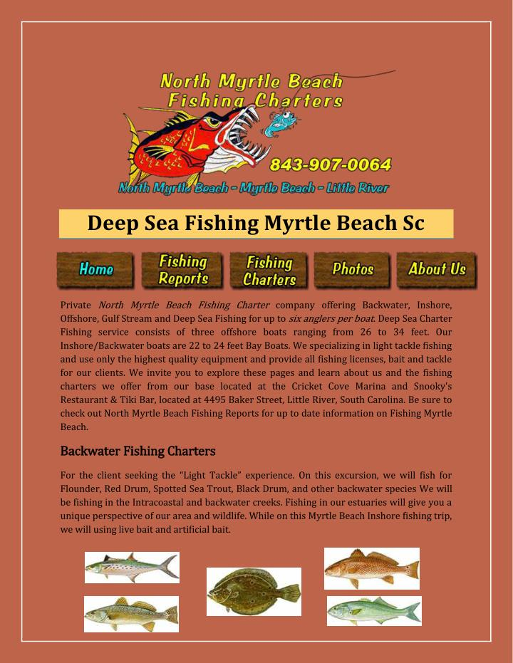 Ppt deep sea fishing myrtle beach sc powerpoint for Deep sea fishing in myrtle beach