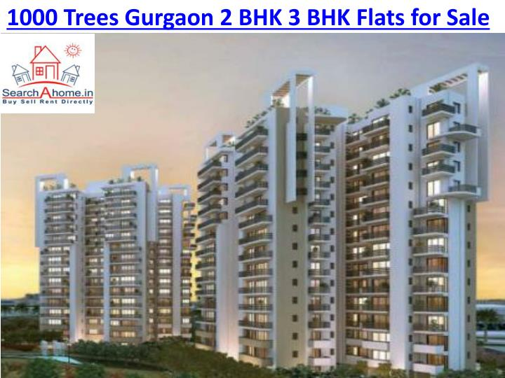 1000 trees gurgaon 2 bhk 3 bhk flats for sale