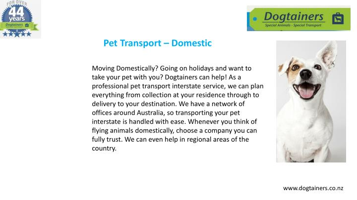 Pet Transport – Domestic