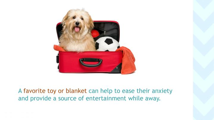 A favorite toy or blanket can help to ease their anxiety