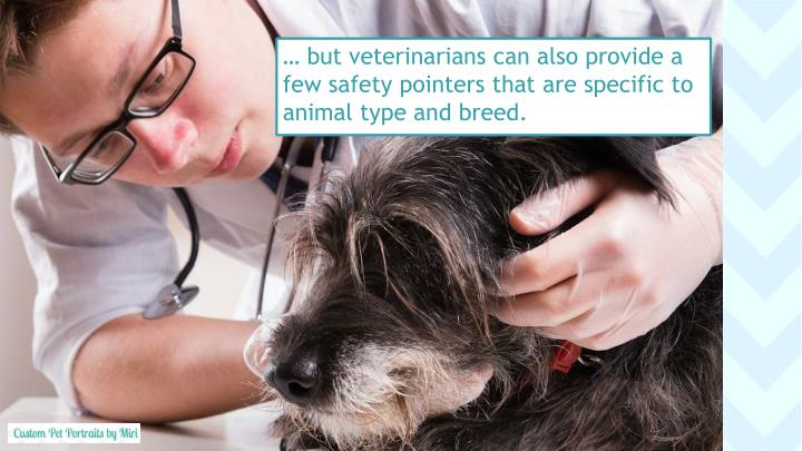 … but veterinarians can also provide a