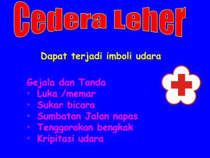 Cedera Leher