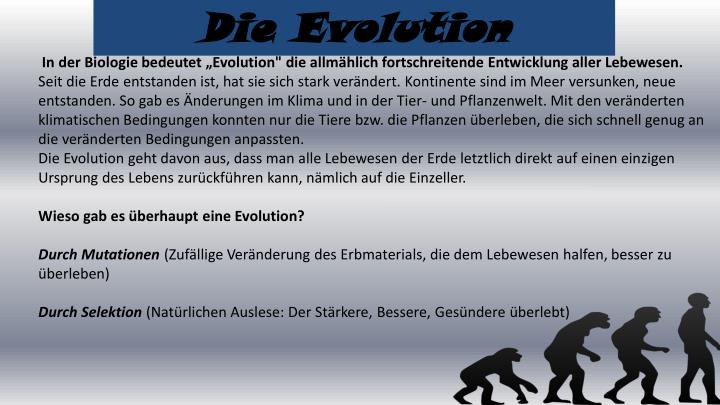 Die Evolution